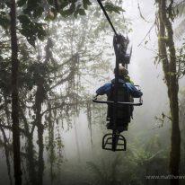 Camuflado entre los árboles 20