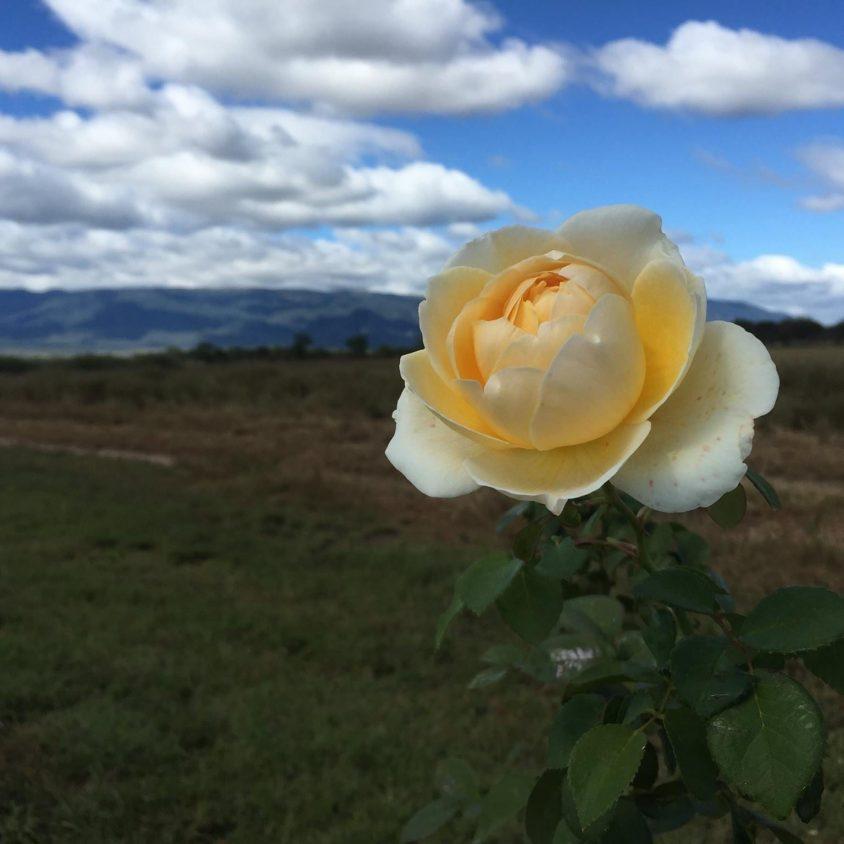 La Primavera Villa Rural crece para vos 7