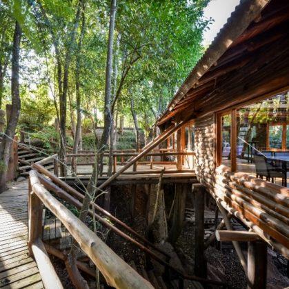 Una cabaña escondida en el bosque 11