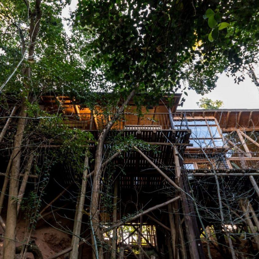 Una cabaña escondida en el bosque 13