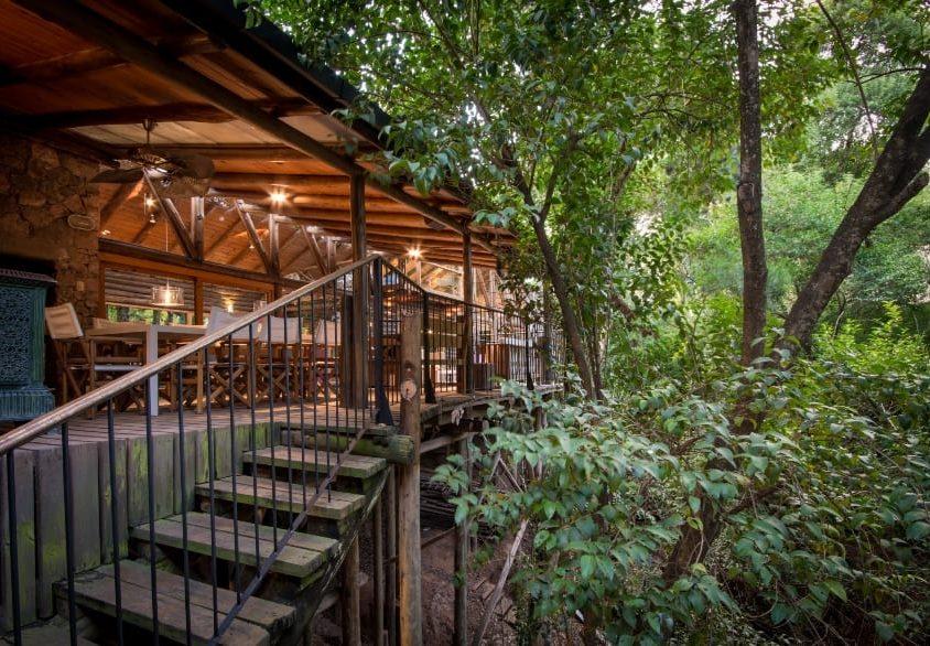 Una cabaña escondida en el bosque 1