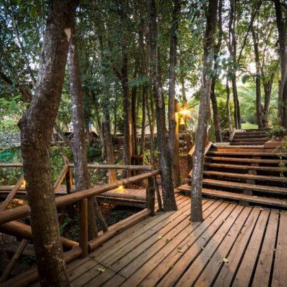Una cabaña escondida en el bosque 15