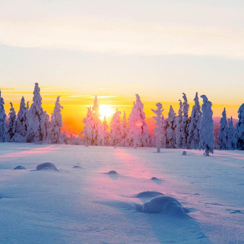 Viendo la aurora boreal desde la cama 1