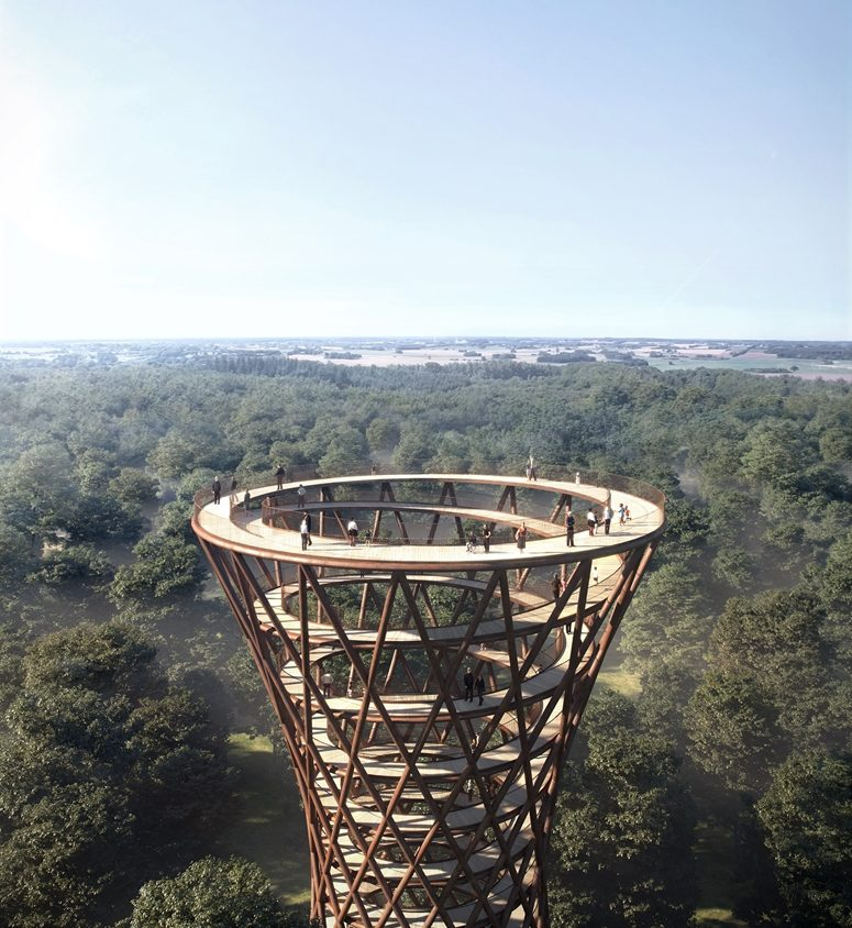 The Treetop Experience 1