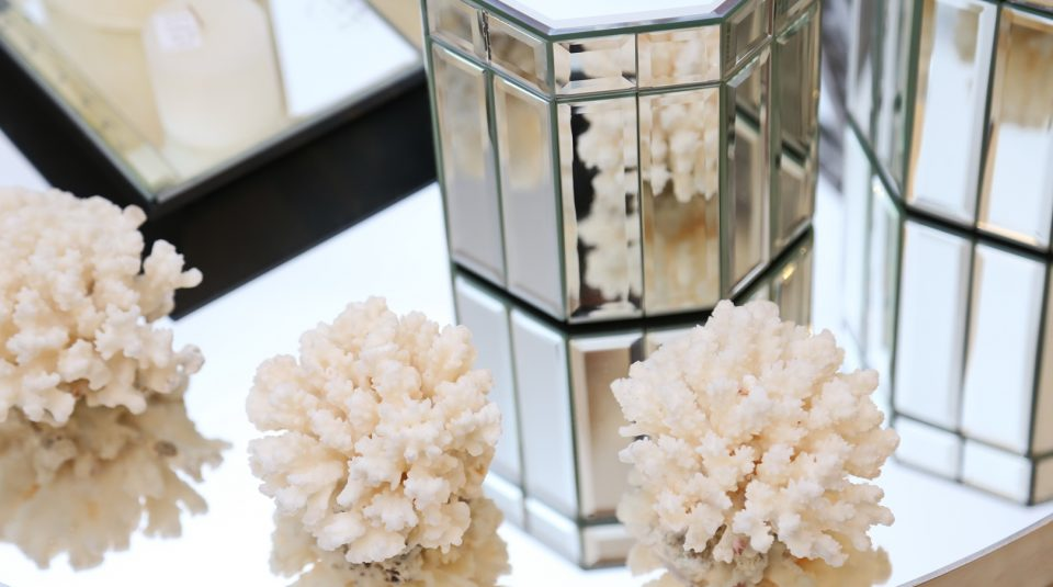 Corales verdaderos y Cajitas de espejos 30