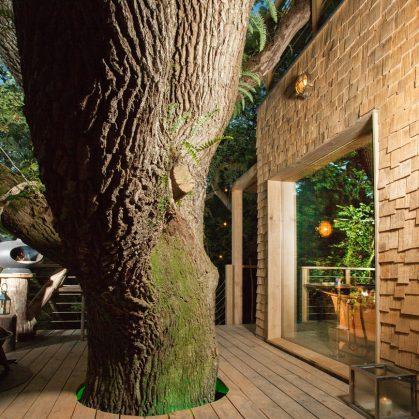 La casa del árbol 10