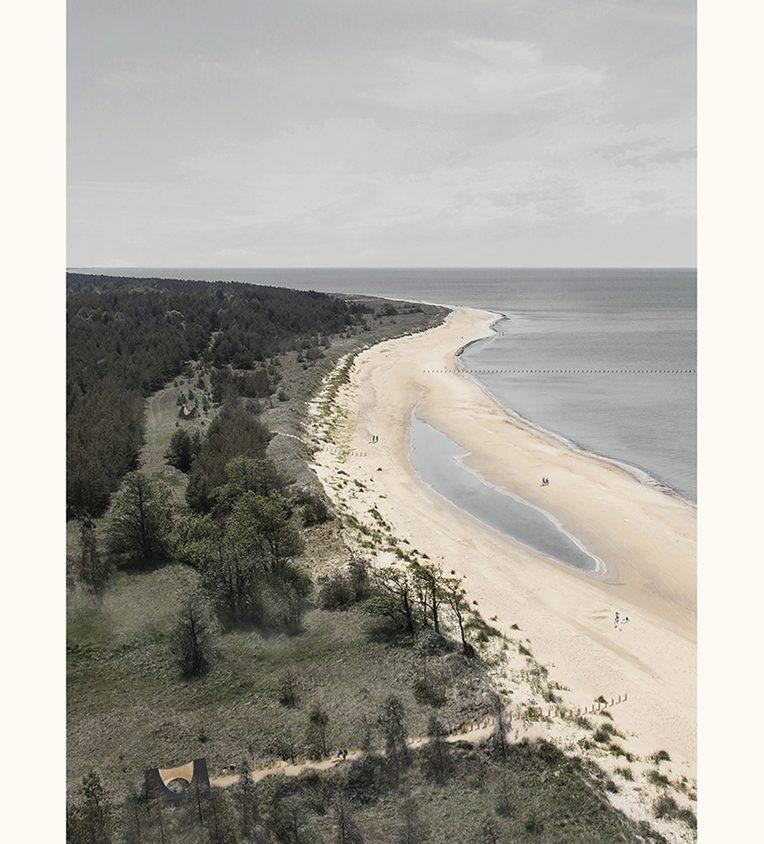 Link - Una conexión sustentable entre el bosque y el océano 4