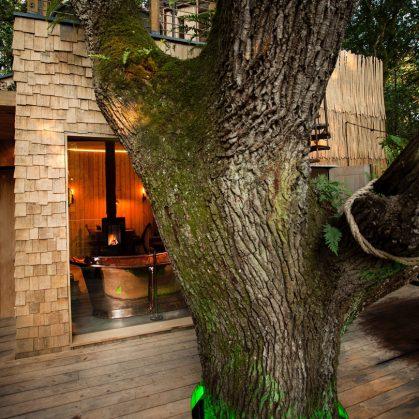La casa del árbol 8