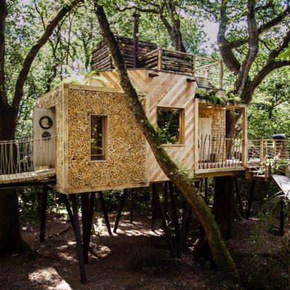 La casa del árbol 5