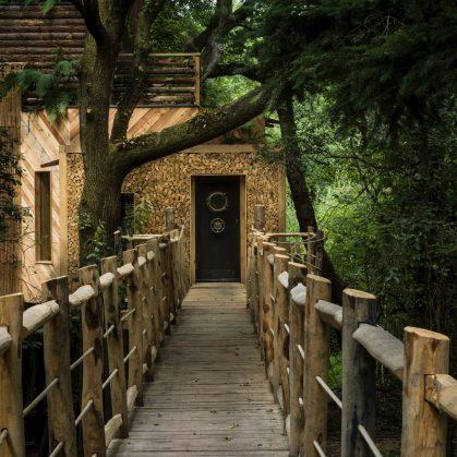 La casa del árbol 11