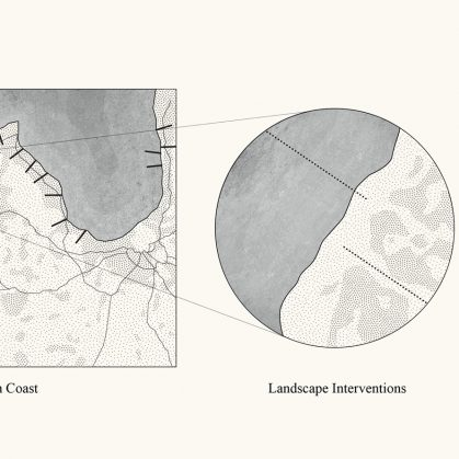 Link - Una conexión sustentable entre el bosque y el océano 5