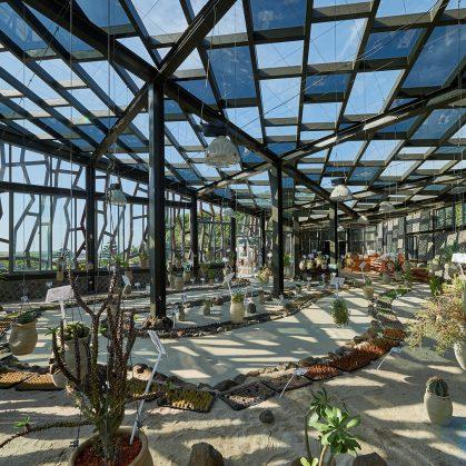 Cactus Park 11