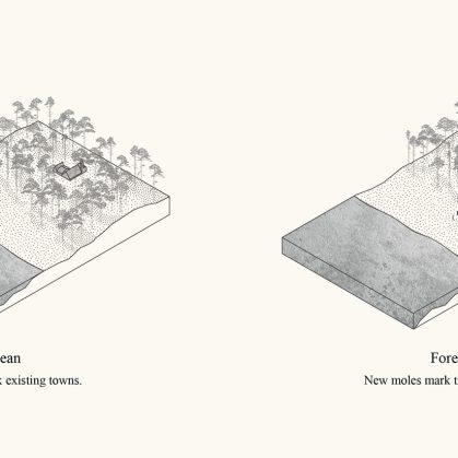 Link - Una conexión sustentable entre el bosque y el océano 10