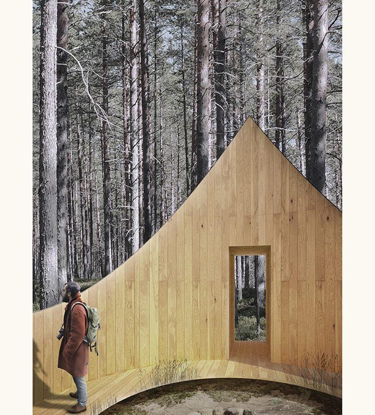 Link - Una conexión sustentable entre el bosque y el océano 2