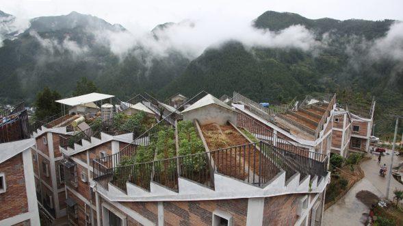 Jintai Village 15