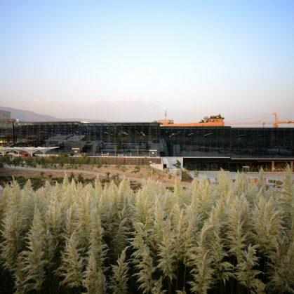 jardín del libro de Teherán 25