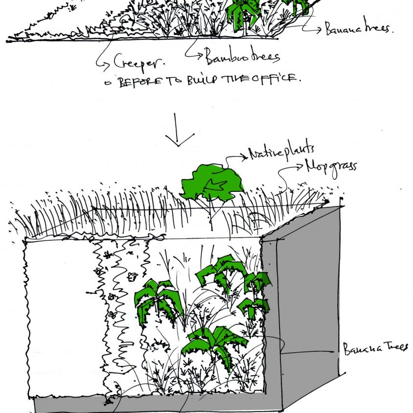 Oficinas y Jardines 9