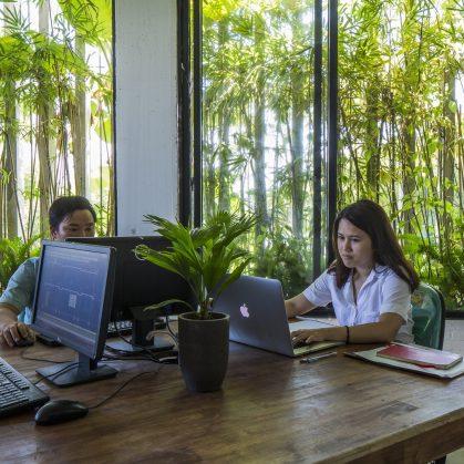 Oficinas y Jardines 19