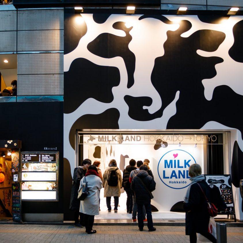 Milkland 2