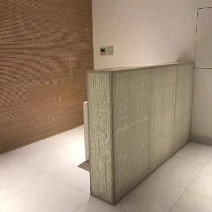 Hormigón traslúcido en el edificio de Capital Bank 6