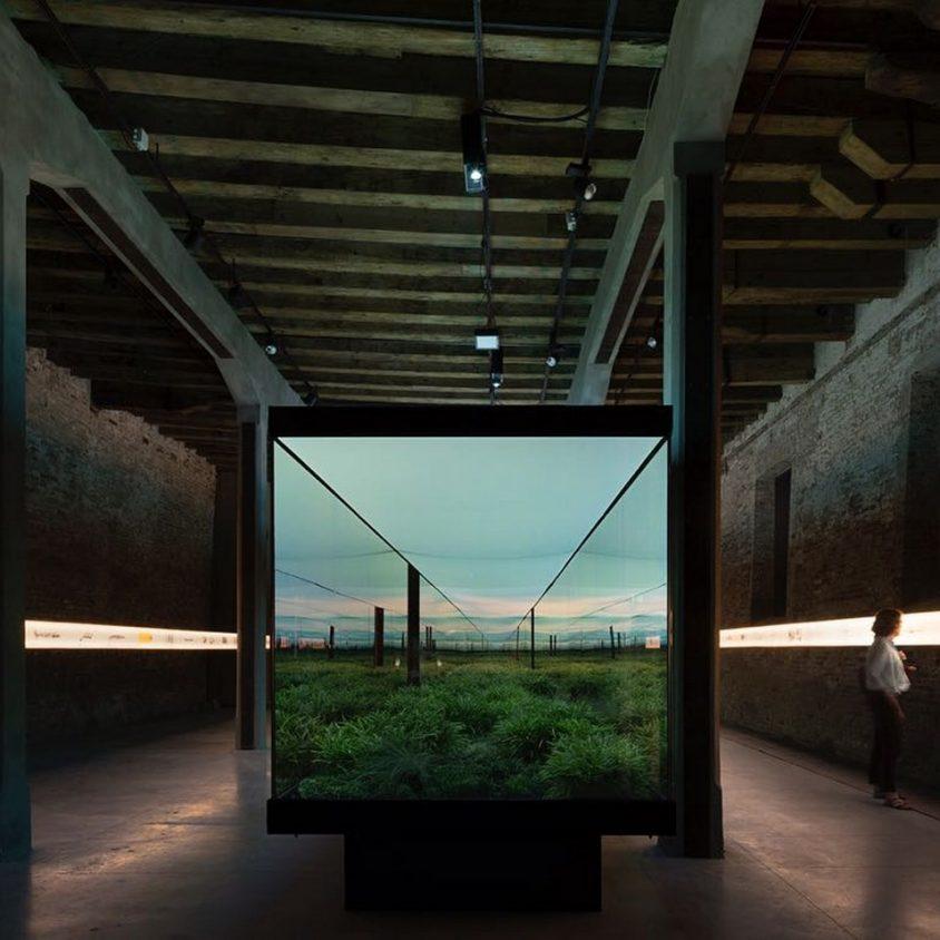 Vértigo Horizontal, la propuesta argentina en Venecia 2