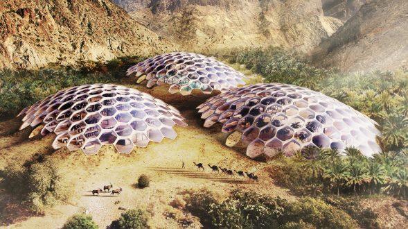 Biodomos para conservar el hábitat natural 10