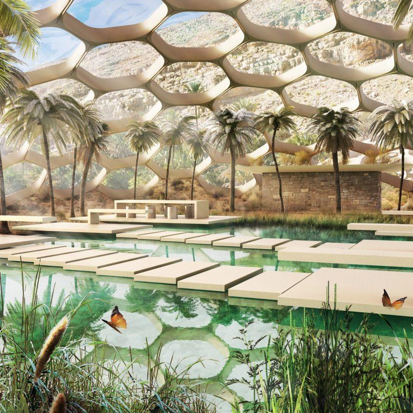 Biodomos para conservar el hábitat natural 4