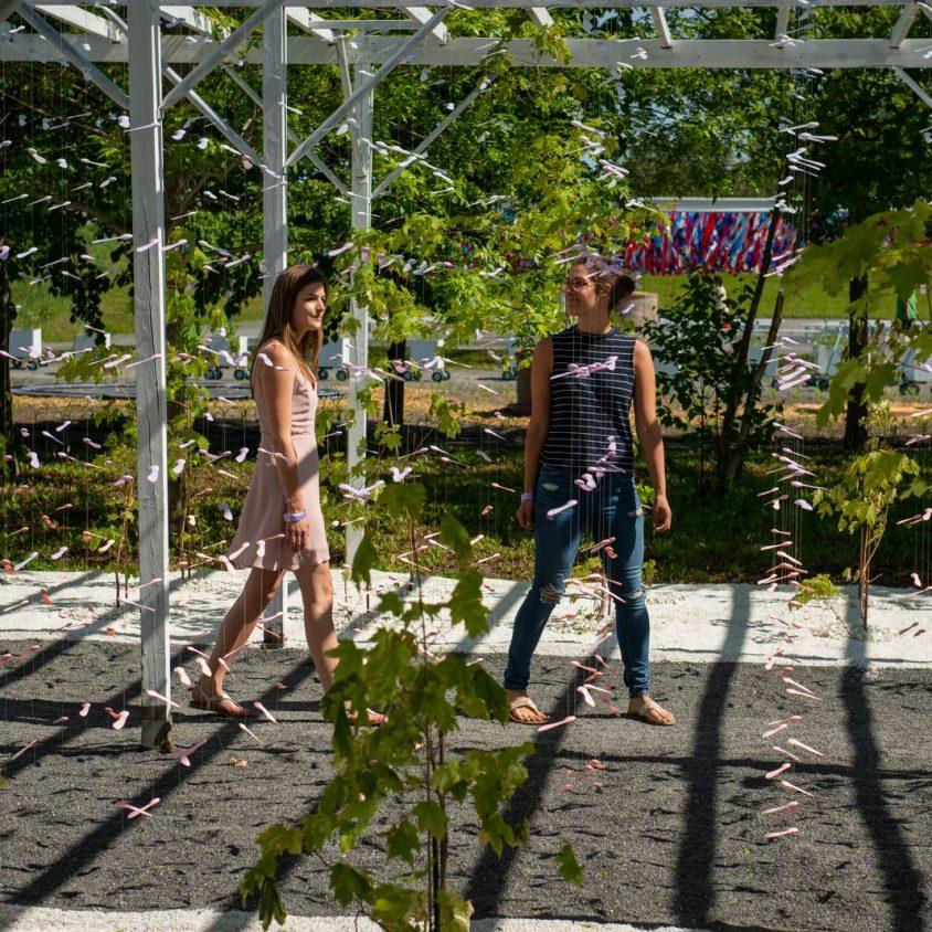 Inicia una nueva edición del Festival Internacional de Jardines 8