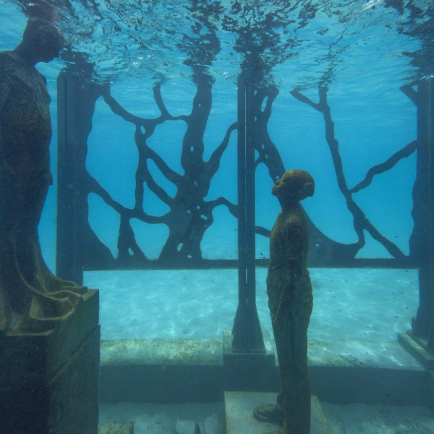 The Sculpture Coralarium, un museo en el agua 19