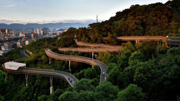 Una caminería dentro del pulmón verde de Fuzhou 16
