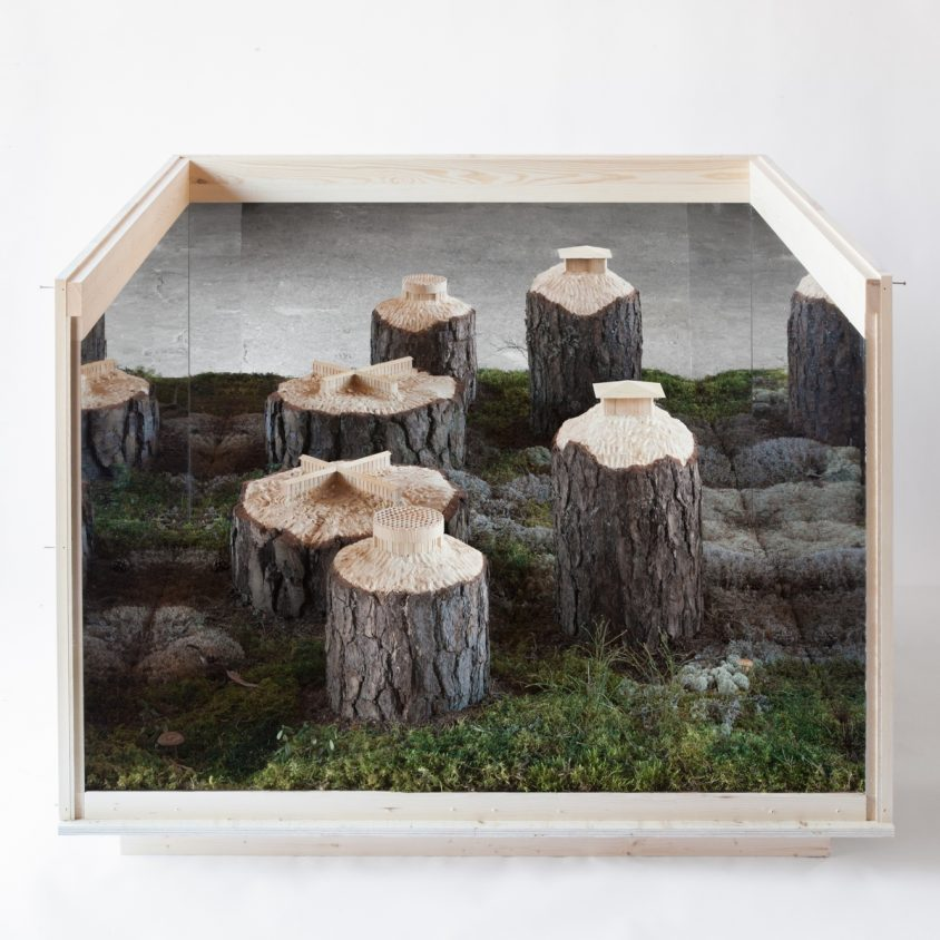 Arte tallado sobre árboles 11
