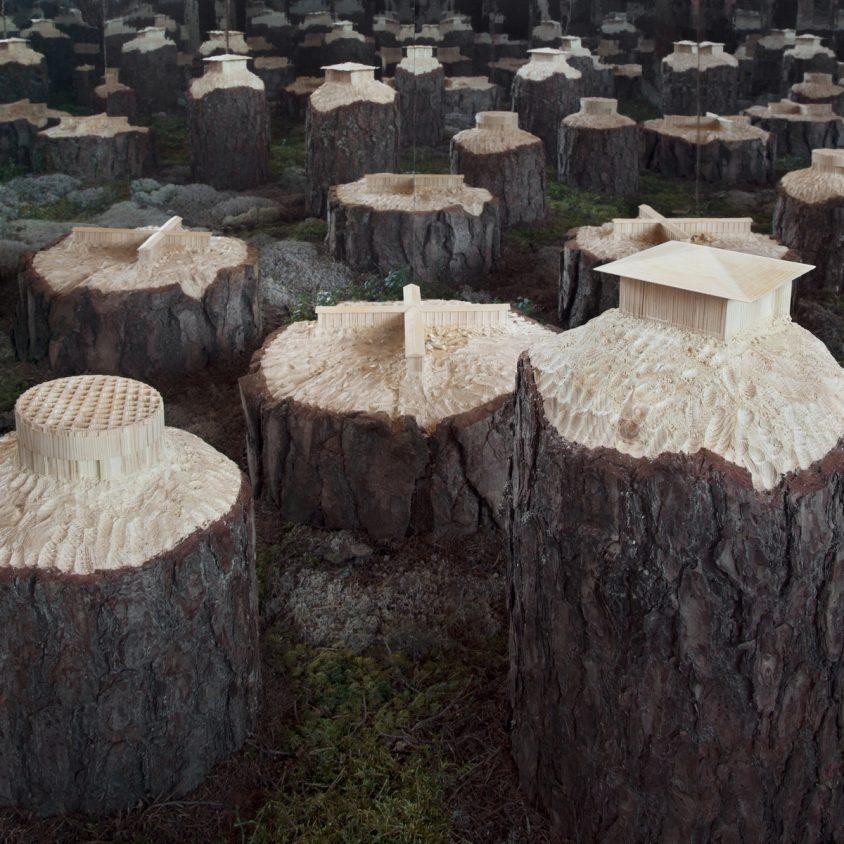 Arte tallado sobre árboles 12