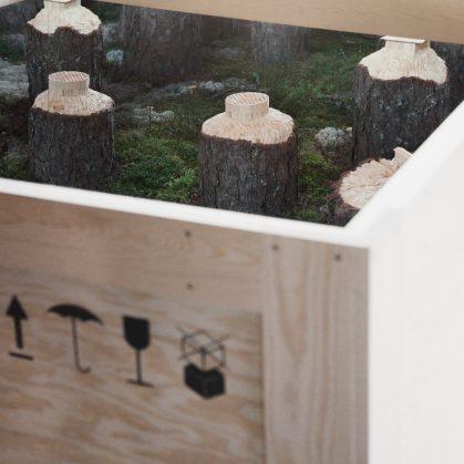 Arte tallado sobre árboles 5