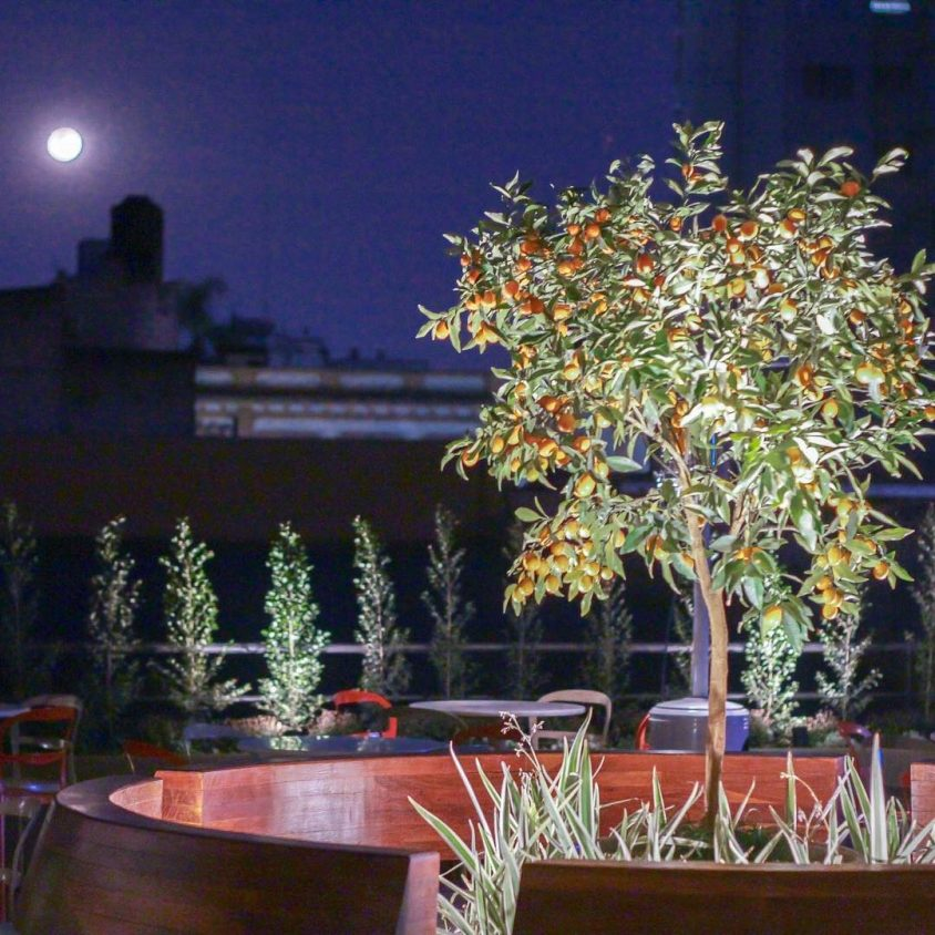 Hotel Garden Plaza 20