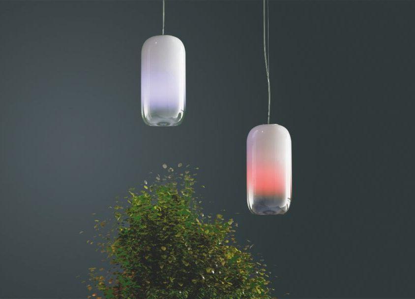Una lámpara para la naturaleza 2
