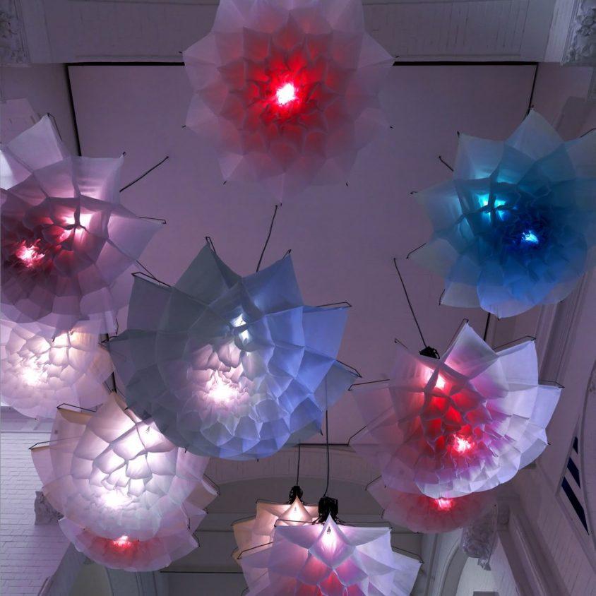 Cuando las lámparas florecen 5