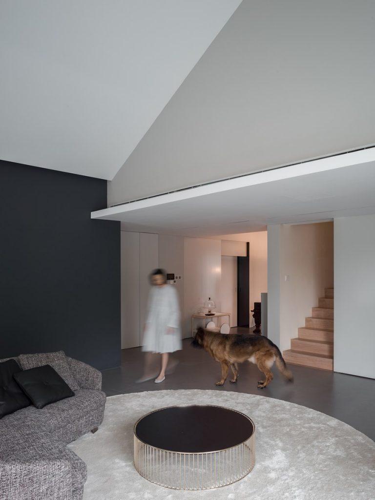 The Dog House 7