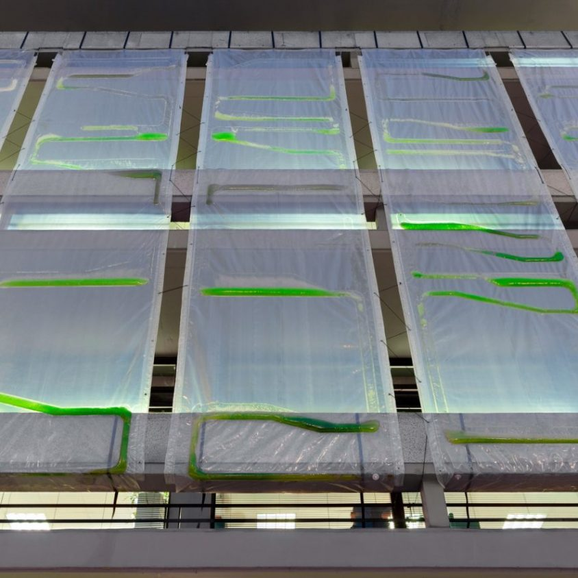 Una cortina bio-digital ecológica 12