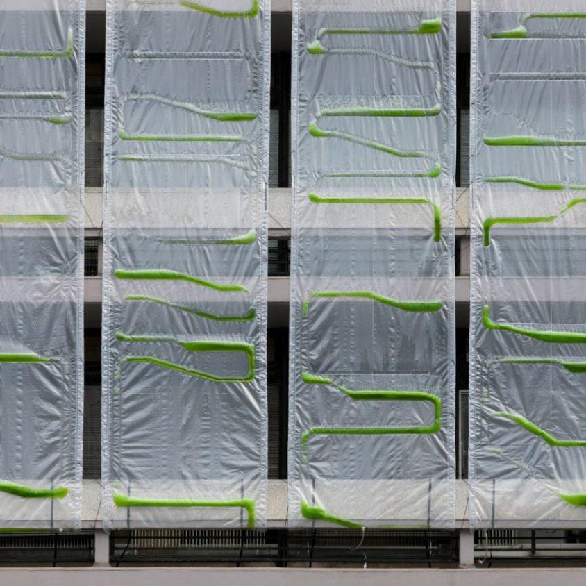 Una cortina bio-digital ecológica 1