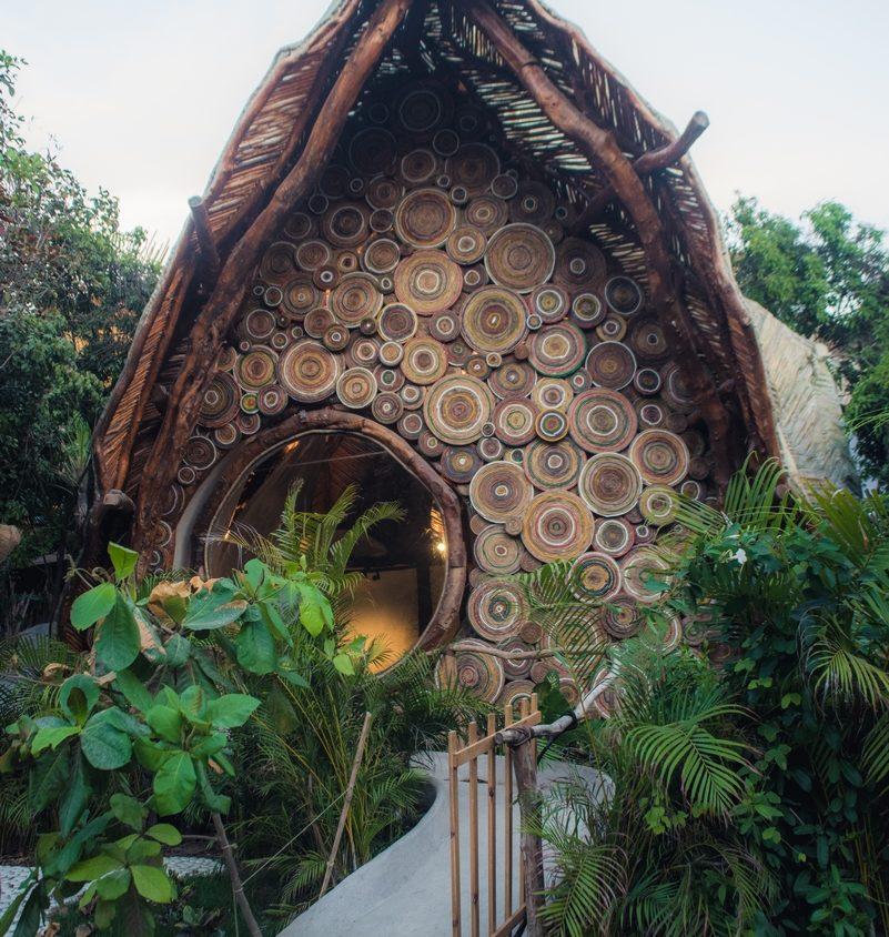 Un centro cultural en la selva maya 2