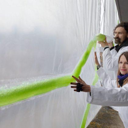 Una cortina bio-digital ecológica 2