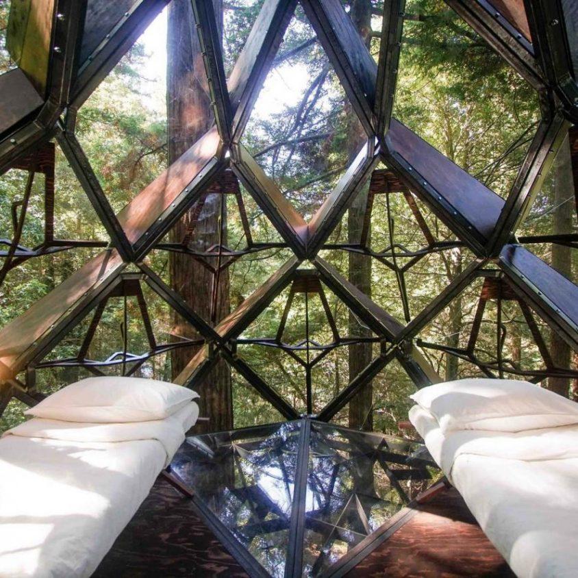 La casa de árbol con forma de piña 10