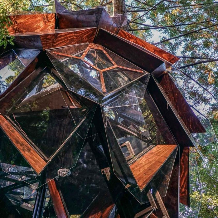 La casa de árbol con forma de piña 1