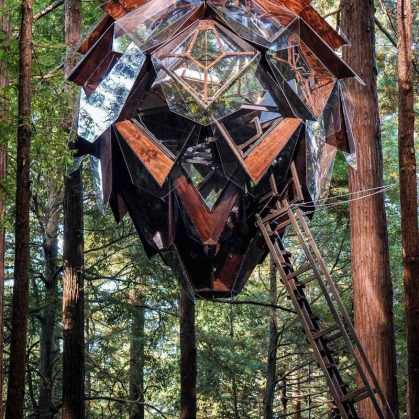 La casa de árbol con forma de piña 13