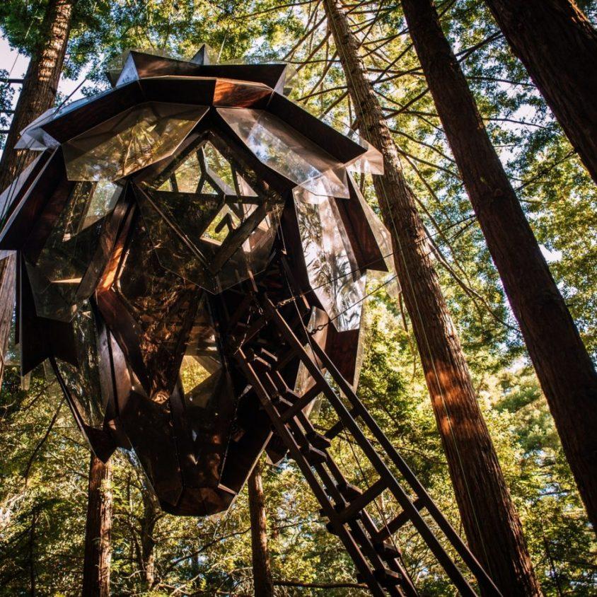 La casa de árbol con forma de piña 9