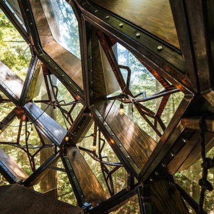 La casa de árbol con forma de piña 15