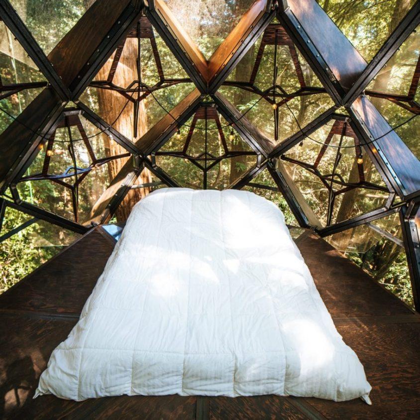 La casa de árbol con forma de piña 17