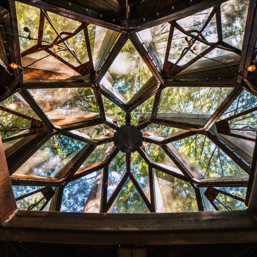 La casa de árbol con forma de piña 19