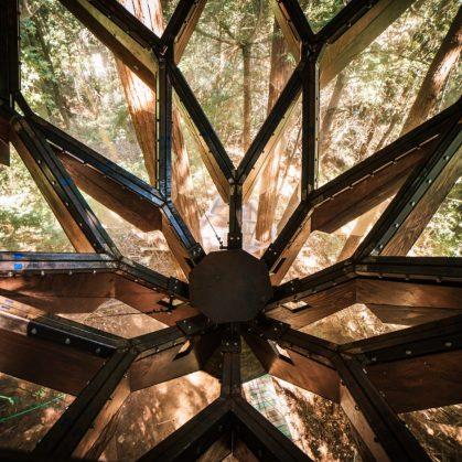 La casa de árbol con forma de piña 20