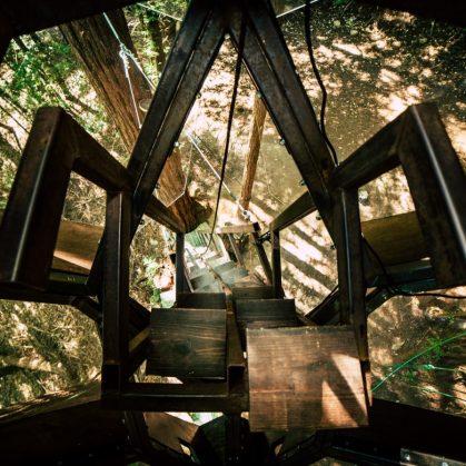 La casa de árbol con forma de piña 16